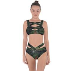 The Night Sadness Surprise Bandaged Up Bikini Set