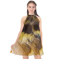 Wing Feather Bird Animal World Halter Neckline Chiffon Dress