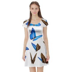 Butterfly Unique Background Short Sleeve Skater Dress