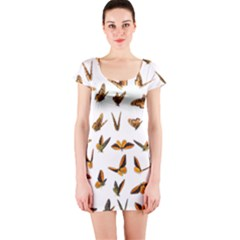 Butterflies Insect Swarm Short Sleeve Bodycon Dress by HermanTelo