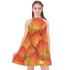 Pattern Texture Leaf Halter Neckline Chiffon Dress