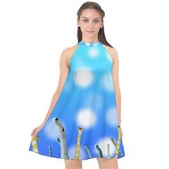 Sea Underwater Life Fish Halter Neckline Chiffon Dress  by HermanTelo