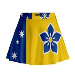 Proposed Flag Of Australian Capital Territory Mini Flare Skirt by abbeyz71