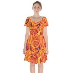 Flower Love Short Sleeve Bardot Dress by BIBILOVER