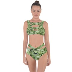 Green And White Leaf Plant Bandaged Up Bikini Set  by Pakrebo