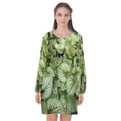 Green And White Leaf Plant Long Sleeve Chiffon Shift Dress