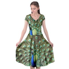 Blue And Green Peacock Cap Sleeve Wrap Front Dress