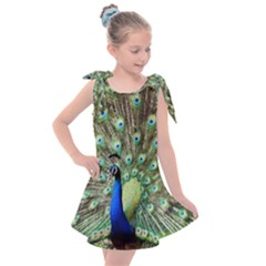Blue And Green Peacock Kids  Tie Up Tunic Dress by Pakrebo