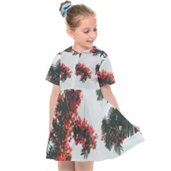 Red Petaled Flowers Kids  Sailor Dress by Pakrebo