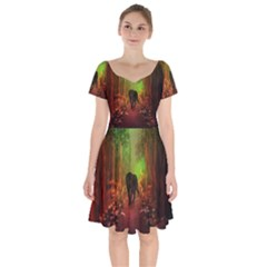 The Lonely Wolf In The Night Short Sleeve Bardot Dress