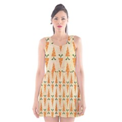 Patter Carrot Pattern Carrot Print Scoop Neck Skater Dress by Pakrebo