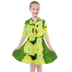 Buttercup Ranunculus Globe Flower Kids  All Frills Chiffon Dress by Pakrebo