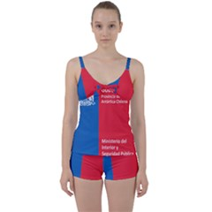 Seal Of Antártica Chilena Province Tie Front Two Piece Tankini