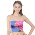 Roses Womens Fashion Tube Top