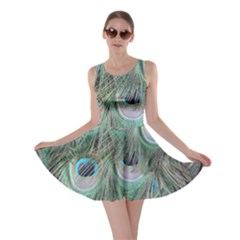 Peacock Feather Pattern Plumage Skater Dress by Pakrebo