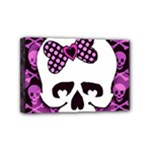 Pink Polka Dot Bow Skull Mini Canvas 6  x 4  (Stretched)