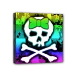 Rainbow Skull Mini Canvas 4  x 4  (Stretched)