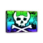 Rainbow Skull Mini Canvas 6  x 4  (Stretched)