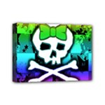 Rainbow Skull Mini Canvas 7  x 5  (Stretched)