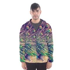 Bird Biology Fauna Material Chile Peacock Plumage Feathers Symmetry Vertebrate Peafowl Men s Hooded Windbreaker by Vaneshart