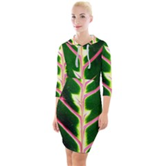 Exotic Green Leaf Quarter Sleeve Hood Bodycon Dress