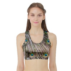 Peacock Feathers Pattern Colorful Sports Bra With Border by Vaneshart