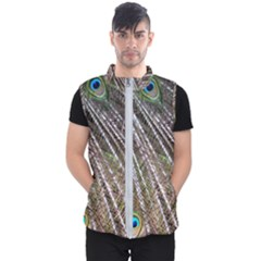 Peacock Feathers Pattern Colorful Men s Puffer Vest by Vaneshart