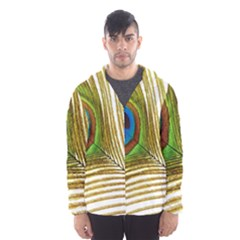 Peacock Feather Plumage Colorful Men s Hooded Windbreaker by Sapixe