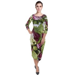 Salad Lettuce Vegetable Quarter Sleeve Midi Velour Bodycon Dress
