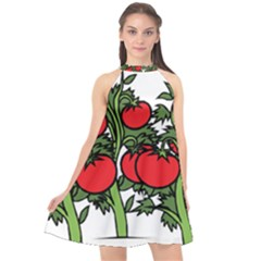 Tomato Garden Vine Plants Red Halter Neckline Chiffon Dress