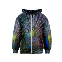 Peacock Colors Bird Colorful Kids  Zipper Hoodie