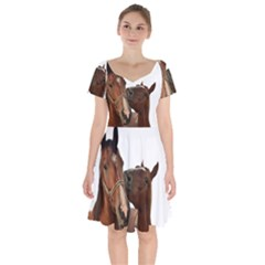 Horses Short Sleeve Bardot Dress