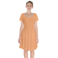 Color Sandy Brown Short Sleeve Bardot Dress by Kultjers