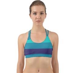 Blue Gradient Stripes  Back Web Sports Bra