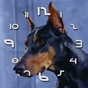 Doberman watch 1