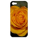 Orange Rose Apple iPhone 5 Hardshell Case