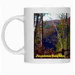Pa Grand Canyon - Turkey Path by Ave Hurley -  White Mug