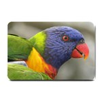 Rainbow Lorikeet Small Doormat