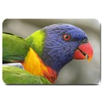 Rainbow Lorikeet Large Doormat