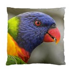 Rainbow Lorikeet Cushion Case (One Side)