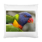 Rainbow Lorikeet Cushion Case (Two Sides)