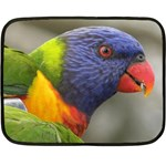 Rainbow Lorikeet Mini Fleece Blanket(Two Sides)
