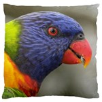 Rainbow Lorikeet Large Cushion Case (One Side)