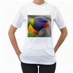 Rainbow Lorikeet Women s T-Shirt