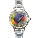 Rainbow Lorikeet Round Italian Charm Watch
