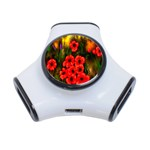 Poppies 3 by  Ave Hurley -  3-Port USB Hub