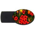 Poppies 3 by  Ave Hurley -  USB Flash Drive Oval (4 GB)