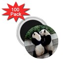 Let Me Kiss You Pandas In Love 1.75  Magnet (100 pack)