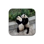 Let Me Kiss You Pandas In Love Rubber Coaster (Square)