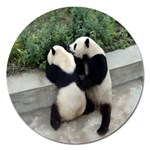 Let Me Kiss You Pandas In Love Magnet 5  (Round)